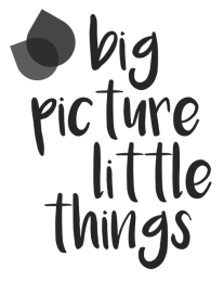 big picture little things
